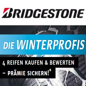 Bridgestone Winterprofis